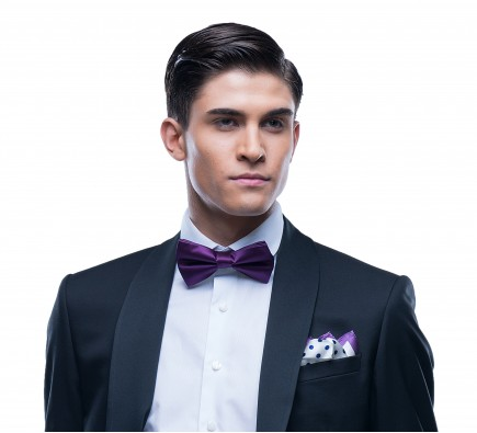 Cezar Purple Bow Tie