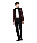 Filip Cezar Burgundy Suit